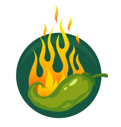hot jalapeno or chili peppers vector image vector image