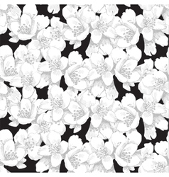 Jasmine seamless pattern vector image vector image