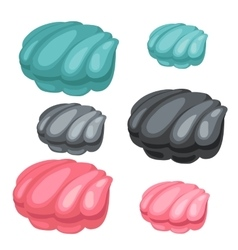 Three pearl shell blue black and pink color vector