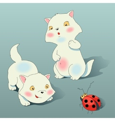 Two kitten plays with ladybird vector