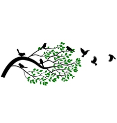 Tree and bird silhouettes vector