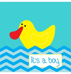Baby boy shower card with cute ducke vector image vector image