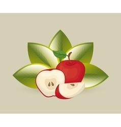 Delicious fresh fruits vector