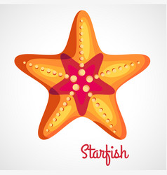 Cartoon orange starfish vector