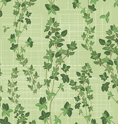 seamless texture of thyme vector image