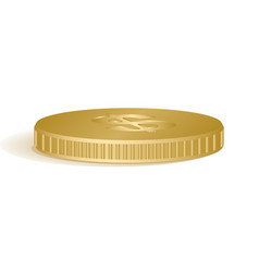 Golden coins isolated on vector