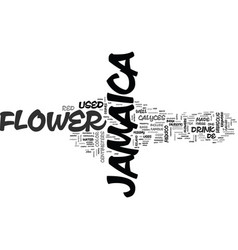 Jamaica flower text background word cloud concept vector