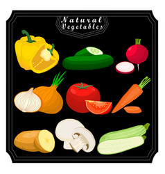The set vegetables vector