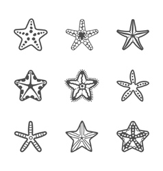 set of various contour sea starfish vector image