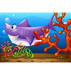 A big fish under the sea vector image vector image