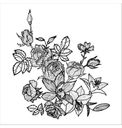 vintage floral element vector image