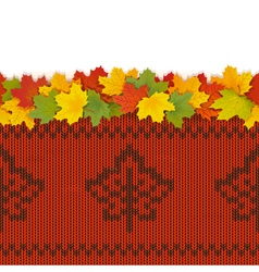 Maple Leaves with Autumn Knitted Pattern 2 vector image