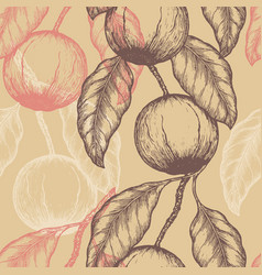 Hand drawn brazil nuts seamless pattern branch of vector
