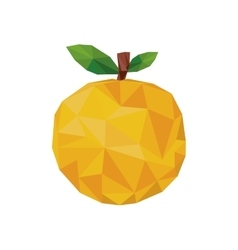 Abstract orange fruit icon vector