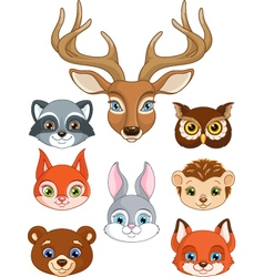 Set forest animals vector