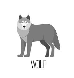 Cute cartoon wolf isolated vector