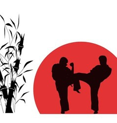 Two men engaged in karate over red background vector