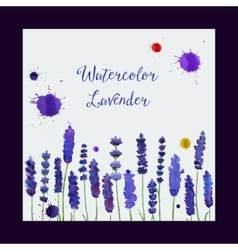 greeting card with watercolor lavender vector image