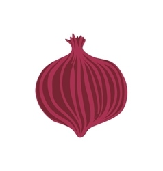 Onion healthy food organic food market icon vector