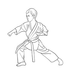 Young karate boy vector