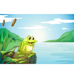 A trunk at the river with a frog vector