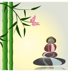 Spa zen background vector