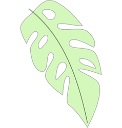 Banana leaf vector