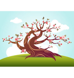 blossom cartoon vector image