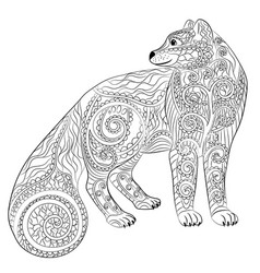 arctic fox in the zentangle style vector image