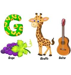 G alphabet vector image vector image