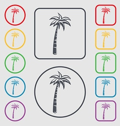 Palm icon sign symbol on the round and square vector