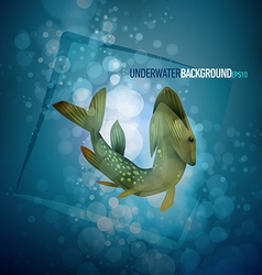 Pike capture underwater background vector