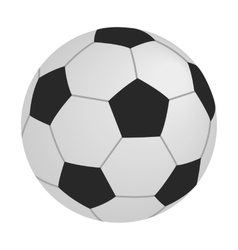 Soccer isometric 3d icon vector