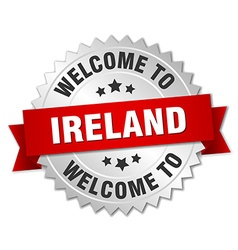 Ireland 3d silver badge with red ribbon vector