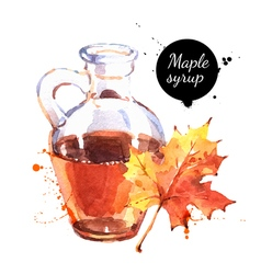 Watercolor hand drawn maple syrup in glass bottle vector