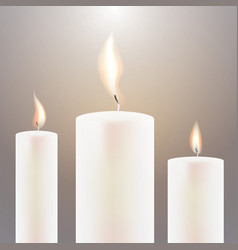 three candle flame vector image