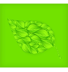 Green leaf green background vector