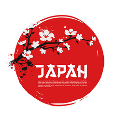 sakura on red background vector image vector image