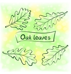 Oak leaves pictogram set vector