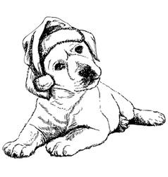 Labrador retriever puppy 01 1 vector