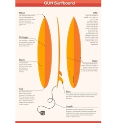 Gun surfboard infographics vector
