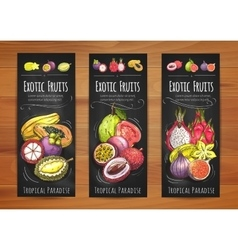 Exotic tropical fruits banners for food design vector image