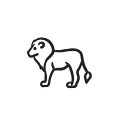 Lion sketch icon vector