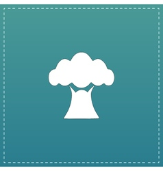Baobab tree icon vector image