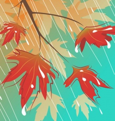 rain and leaves background vector image