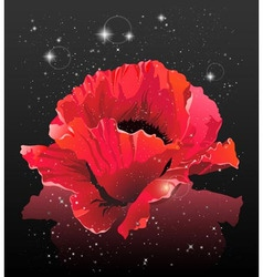 Flower in space vector image