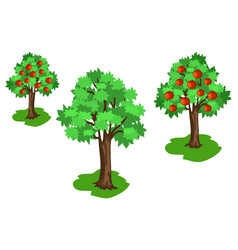 Apple tree with green leaves and red fruits set vector