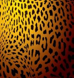 leopard skin gold vector image