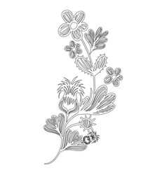 line natural branches flowers with leaves vector image vector image