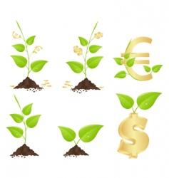 money trees vector image